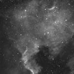 Nordamerikanebel (NGC7000) / 29.8.2017 / 80/400 Skywatcher Esprit, ASI1600MMC, Ha-Filter, 30 Min. / A.-M. Deckwerth/F. Steimer