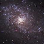Triangulumgalaxie (M33) 27.9.2017 / TMB 15cm-Apochromat f/6.2, ASI1600MMC, 120 Min. / F. Steimer