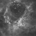 Rosettennebel (NGC2237-46) / 4.2.2018 / TMB 15cm-Apochromat f/6.2, ASI1600MMC, 120 Min. / F. Steimer